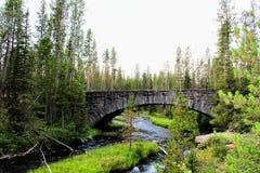 Ponte bonita do parque nacional de Yellowstone com rochas e cores lindos do musgo e das florestas imagem de stock royalty free