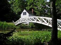 Ponte branca do pé Fotografia de Stock