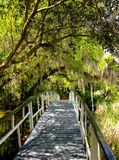 Ponte branca em Charleston, South Carolina Foto de Stock
