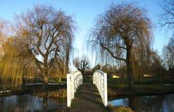Ponte branca sobre a água em St Neots, Cambridgeshire com as árvores de salgueiro no fundo imagens de stock