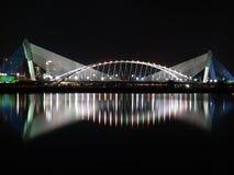Ponte cénico Imagem de Stock