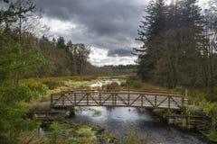 Ponte & córrego Imagem de Stock Royalty Free