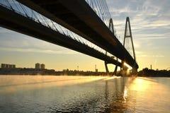 ponte Cabo-apoiada através do rio Neva Imagens de Stock