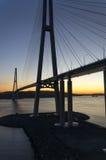A ponte cabo-ficada alta no por do sol Imagens de Stock