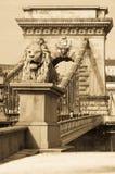 Ponte a catena con il leone, Budapest, Ungheria Fotografia Stock Libera da Diritti