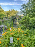 Ponte Central Park de Gapstow, New York City Fotografia de Stock