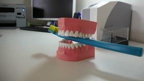Ponte cerâmica dental video estoque