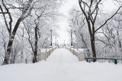 Ponte cercada pela árvore nevado Foto de Stock