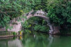 Ponte chinesa da curva Fotografia de Stock