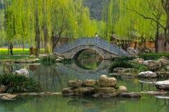 Ponte chinesa perto do lago durante a mola adiantada Fotografia de Stock