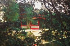Ponte cinese Fotografia Stock