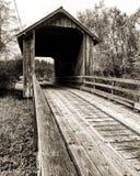 Ponte coberta Imagem de Stock Royalty Free