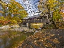 Ponte coberta de madeira velha Imagens de Stock Royalty Free