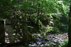 Ponte com rio e escadas na floresta do ravennaschlucht fotografia de stock