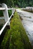 Ponte concreto fotografie stock