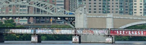 Ponte coperto dei graffiti Fotografie Stock