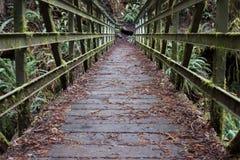 Ponte coperto del muschio del metallo Fotografie Stock Libere da Diritti