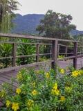 Ponte cultural de Kuching da vila de Sarawak a Iban Longhouse Imagem de Stock