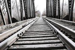 Ponte d'acciaio del treno Immagine Stock