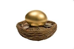 Ponte d'oeufs d'or sur des pièces de monnaie dans l'emboîtement Image libre de droits
