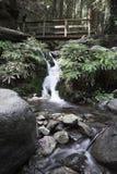 Ponte da caminhada sobre a angra da queda Fotos de Stock Royalty Free