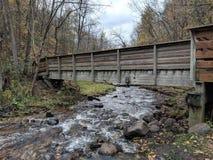 Ponte da cascata imagens de stock