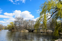 Ponte da curva, Central Park, New York City Fotografia de Stock Royalty Free