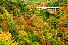 Ponte da estrada com as folhas de outono coloridas no desfiladeiro de Naruko fotos de stock