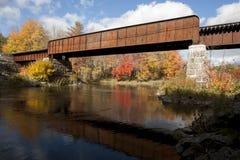 Ponte da estrada de trilho na queda fotografia de stock royalty free