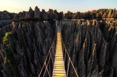 Ponte da garganta de Tsingy fotografia de stock