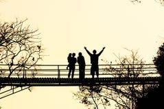 Ponte da madeira da silhueta Imagens de Stock
