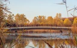 Ponte da queda fotografia de stock royalty free