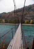 Ponte da suspensão Bridge Foto de Stock