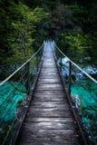 Ponte da suspensão Bridge Fotografia de Stock Royalty Free