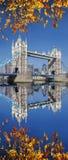 Ponte da torre com as folhas de outono em Londres, Reino Unido Imagem de Stock
