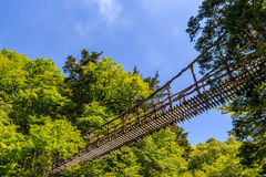 Ponte da videira em Okuiya fotografia de stock