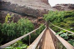 Ponte de balanço na vala de Menehune fotografia de stock royalty free