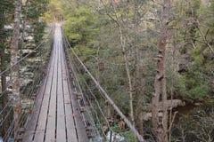 A ponte de balanço sobre a cachoeira Piney grande fornece uma opinião nivelada superior da árvore fotografia de stock