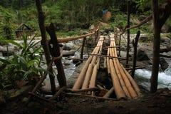 Ponte de bambu Imagem de Stock