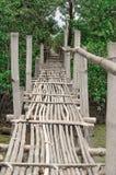 Ponte de bambu Foto de Stock