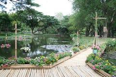 Ponte de bambu com flor Fotografia de Stock