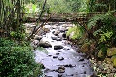 Ponte de bambu em Indonésia Foto de Stock