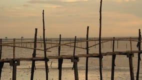 Ponte de bambu na praia filme