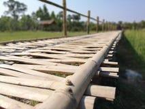 ponte de bambu no fkeld da grama na maneira fotografia de stock royalty free