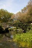 Ponte de Central Park Fotografia de Stock Royalty Free