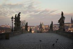 Ponte de Charles (Karluv mais) no amanhecer, Praga, checa Fotos de Stock