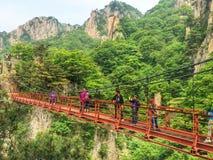 Ponte de corda Fotos de Stock Royalty Free