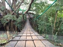 Ponte de corda de madeira Imagem de Stock