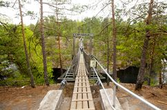 Ponte de corda no parque nacional Repovesi, Finlandia Imagem de Stock Royalty Free