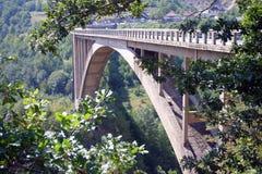 Ponte de Djurdjevica Tara Fotografia de Stock